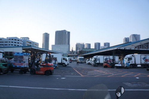 Tsukiji Market during the wee hours of the morning